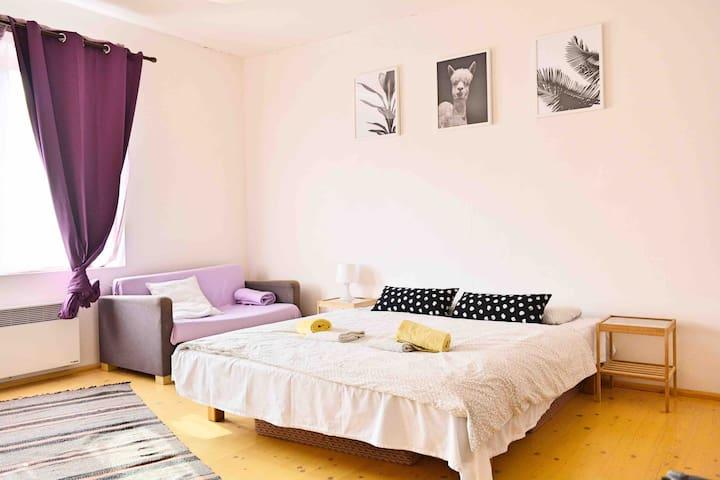 Comfortable spotless bedroom