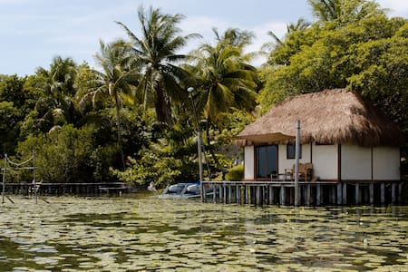 Lagoon Front Hut: Daily Cleaning, Bikes & Kayaks!