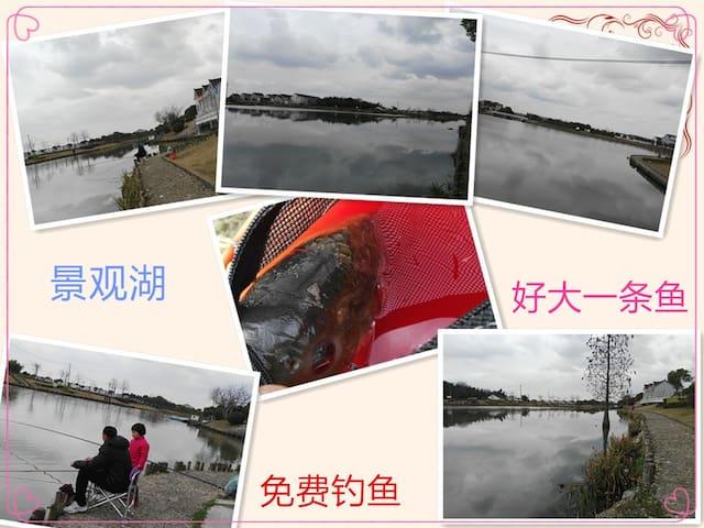 附近景观湖免费钓鱼 5分钟车程