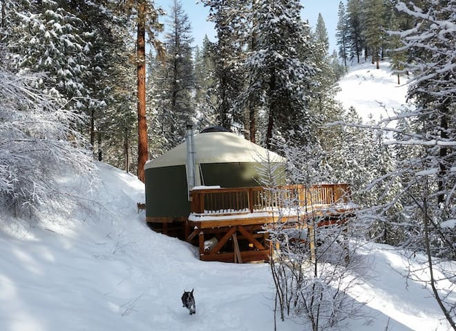 Sly Owl Ranch Yurt