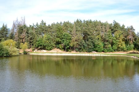 Les u Rybičky (kemp u rybníka s vodou na koupání)