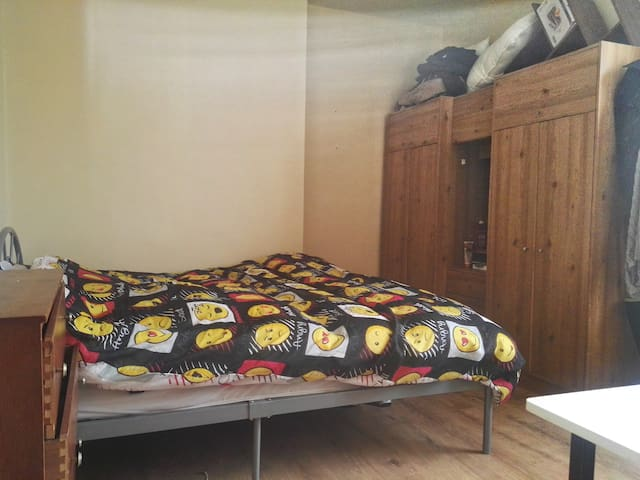 Spacious room close to Notting Hill/Marble Arc