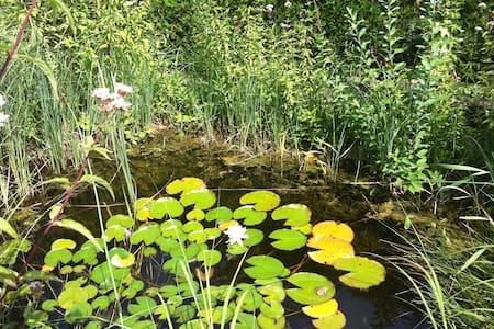 Nature Paradise - Gemeinde Bruck an der Leitha