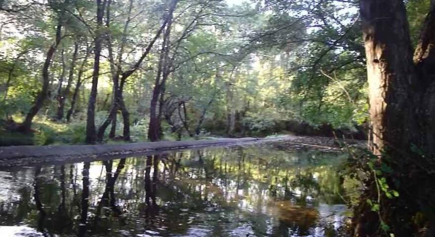 Zona de baño, Rio Cabe (100 metros)