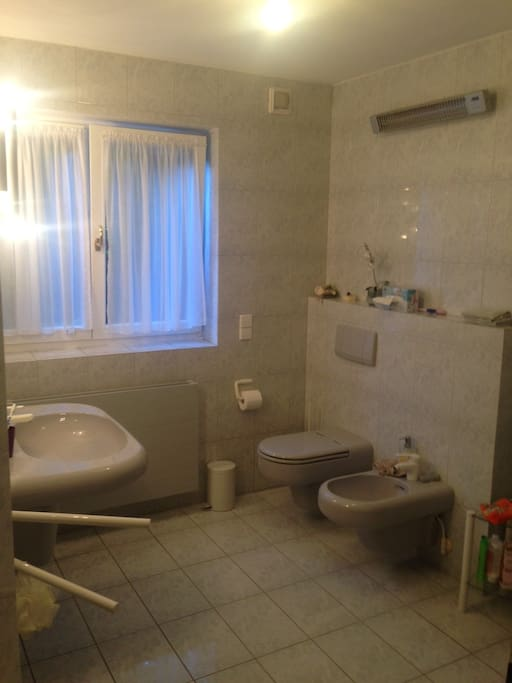The bathroom. The bathroom will be used only by the guests during their stay