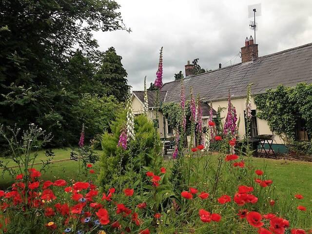Old Charm Cottage.Newgrange, Donore, Drogheda .