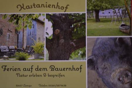 ökologisches Bauernhaus + Tierpark - Lemgo - Haus