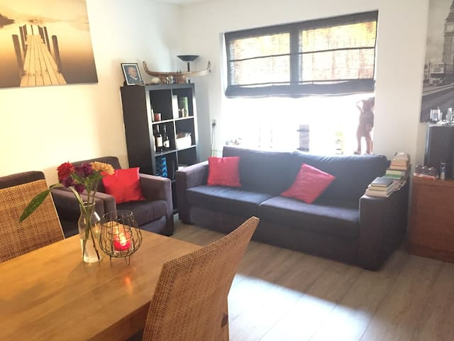 Furnished apartment (close to UMCG)  with backyard
