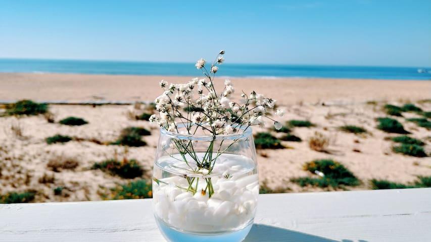 Apartamento Flor do Mar