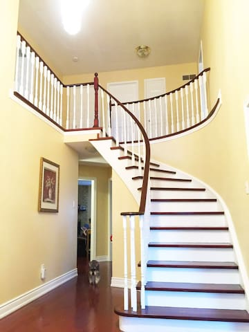 Room, Private Bathroom, and Gym - Mississauga - Talo