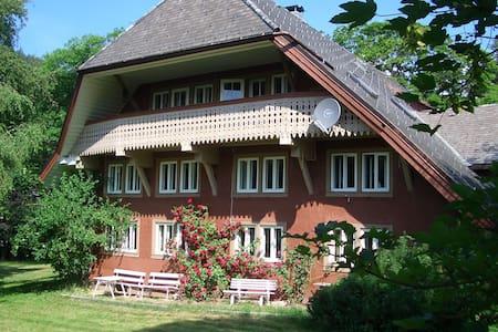 Haus Bacmeister Wohnung I - Sankt Blasien - Condominium