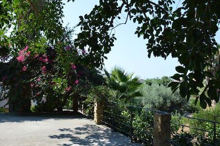 La Piana. The authentic Sicily - Caronia - วิลล่า