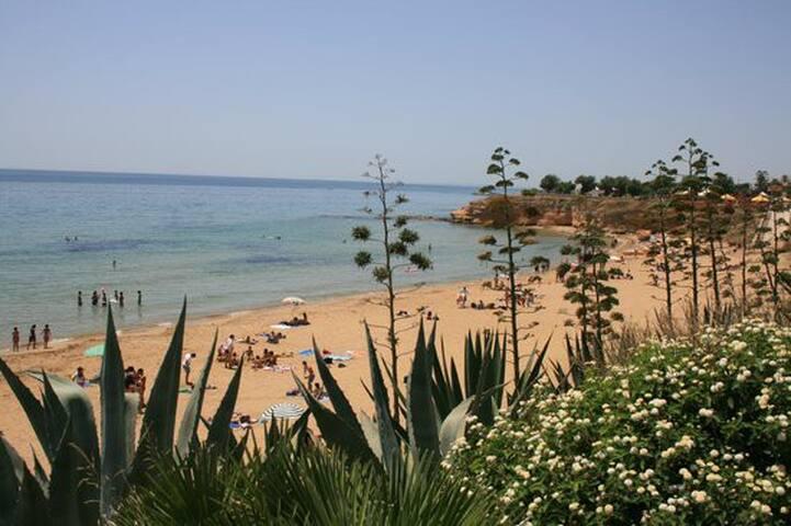 L'Aurelia Dependance - sul mare di Avola