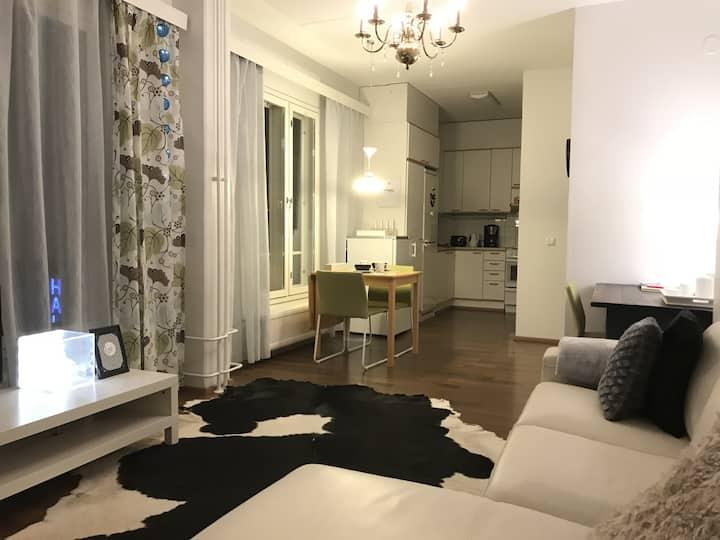 City Apartment 50m2 with sauna Väinönkatu 7