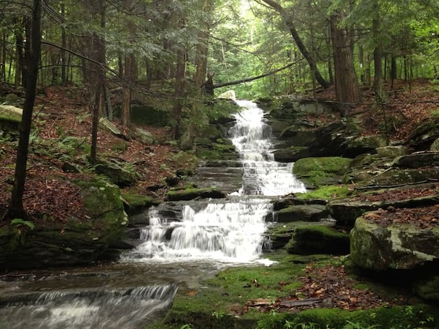 Dramatic waterfalls surrounded by hemlocks. Hike along the cooling waters. Shown here in the springtime a day or two after some rain. Level of flow varies from a spring-fed trickle in very dry weather to a roaring cascade after rains.