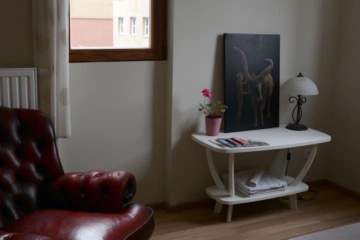 Room by the oldtown, bio breakfast - Gent - Apartemen