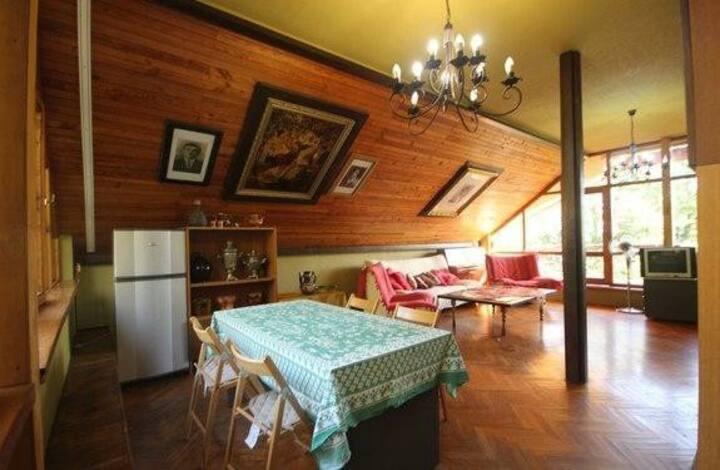 Мансарда с балконом, санузлом,плитой, холодильнико