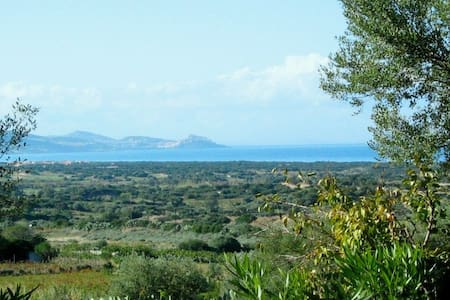 Smart Holiday Apartment, Sardegna, Badesi - Apartamento