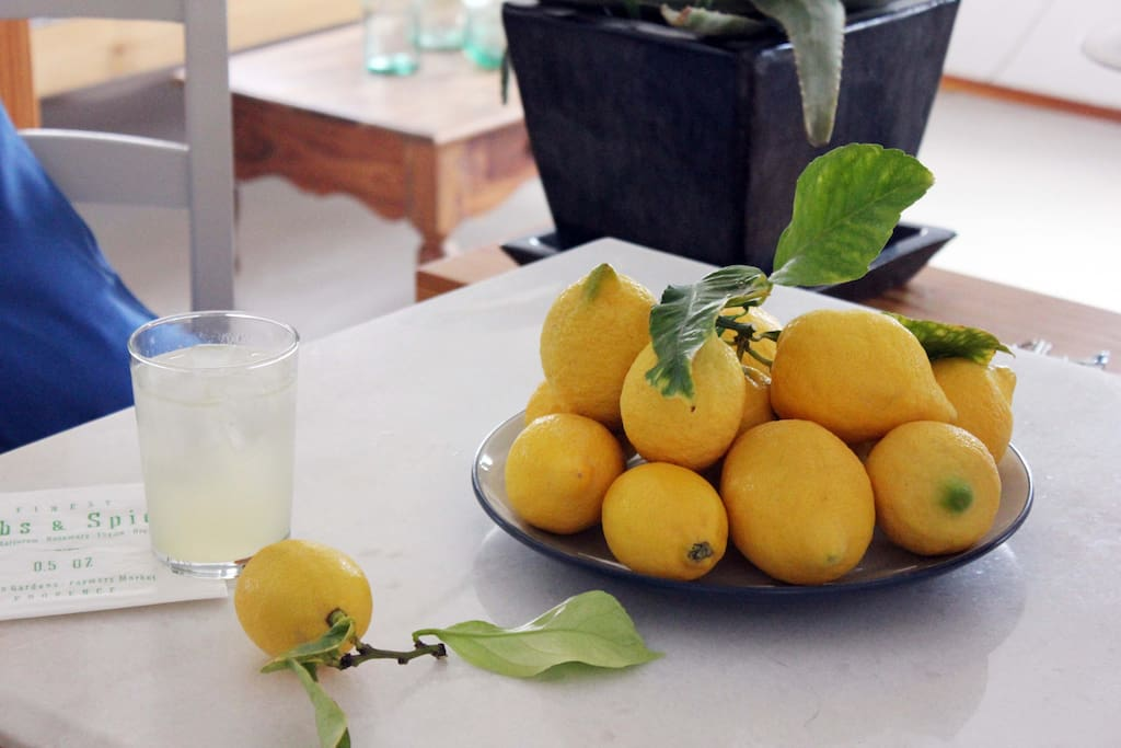 Fresh lemonade from our lemon tree