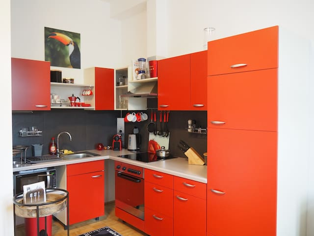 Affordable Stylish Home in the Heart of Wels