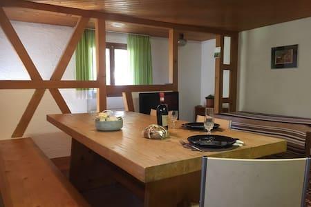 Appartamento rustico tranquillo e nel verde - Avegno - 公寓