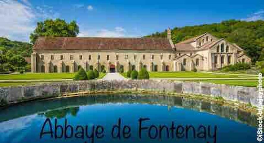À 25 km: abbaye cistercienne c'est l'une des merveilles de la Bourgogne, la fondation par l'abbaye-mère de Cîteaux remonte à 1118. Fontenay conserve dans son vallon sauvage au cœur de la forêt, un voyage inoubliable au temps des moines blancs.