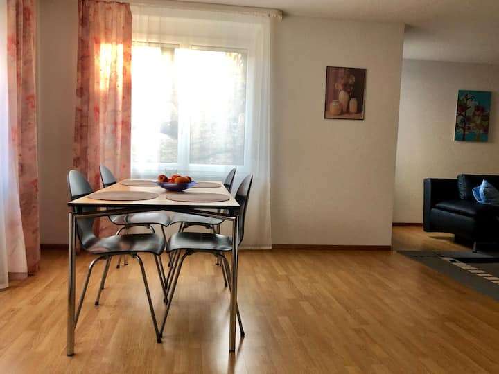 Helles Apartment in Bad Säckingen