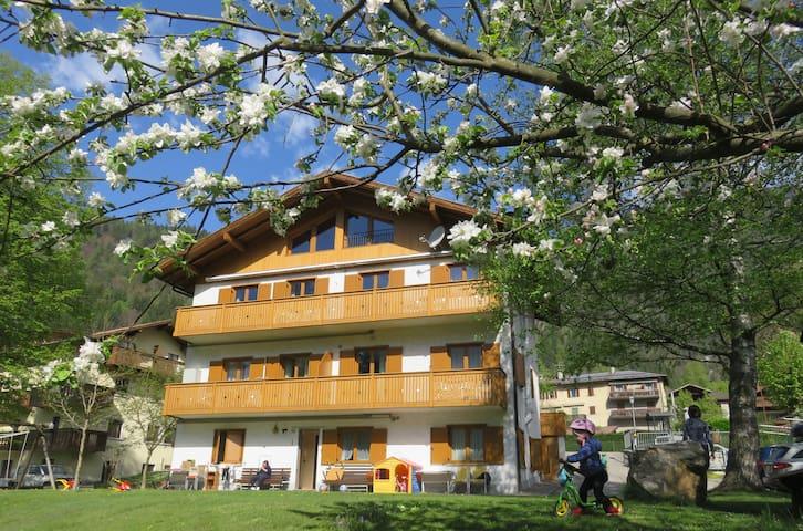 App. 1 vicino a M. di Campiglio e alle Dolomiti