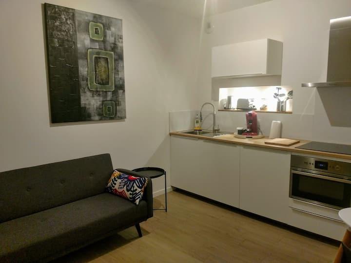 Appartement T1 bis Mâcon centre 2/3 voyageurs