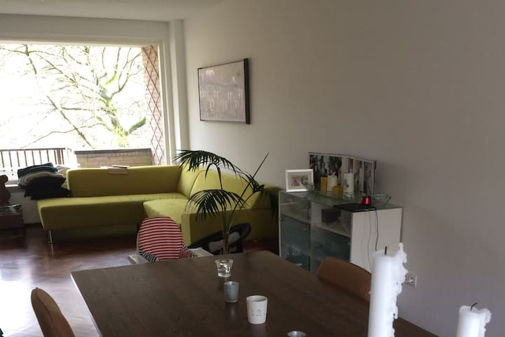 Recently renovated appartment in Amsterdam