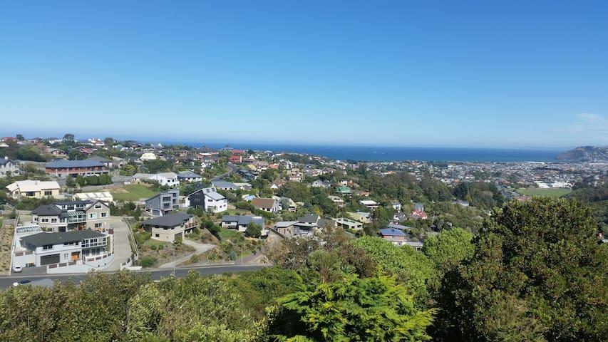 Quiet scenic sea view close to town - Dunedin - House