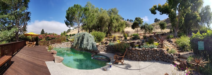 Extended work stay in Bay Area oasis w/pool