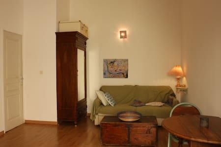Very nice studio apartmen Cagnes Sur/Mer near Nice - カーニュ·シュル·メール