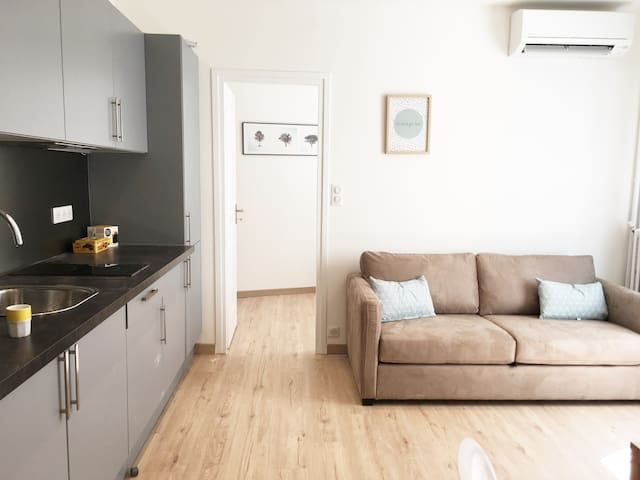 Cosy and Renovated 1 bedroom Negresco Area