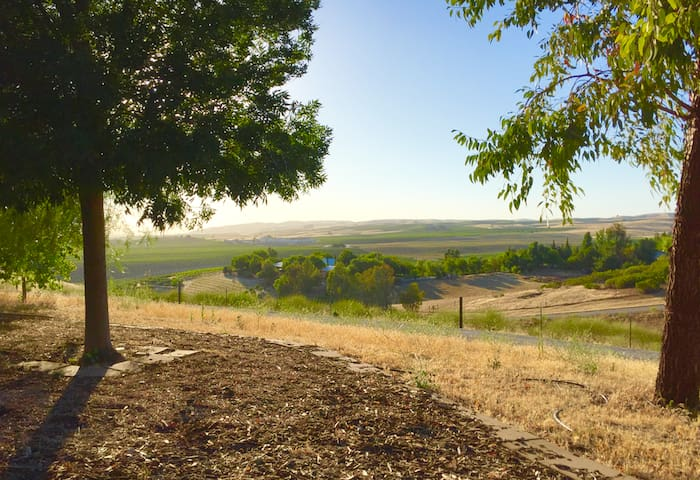 3BD/2BA Cozy Country home! Wine! Gorgeous Views! - San Miguel - Rumah