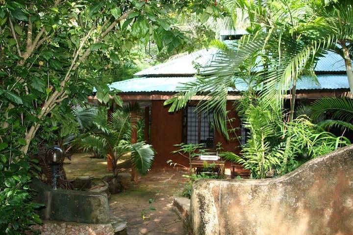 Bokoboko Guesthouse