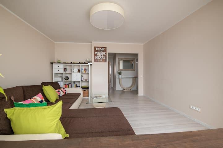 Elegant Scandinavian apartment