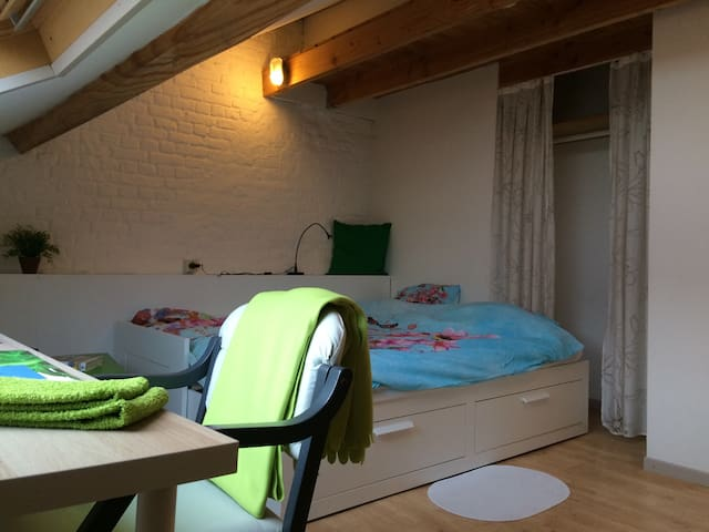 Two bright rooms in the city center - Leuven - Casa
