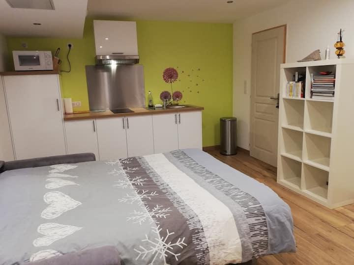 Nice spacious and cosy room near Geneva