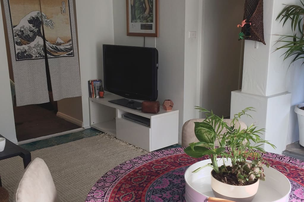 TV, DVD player and Wi-Fi
