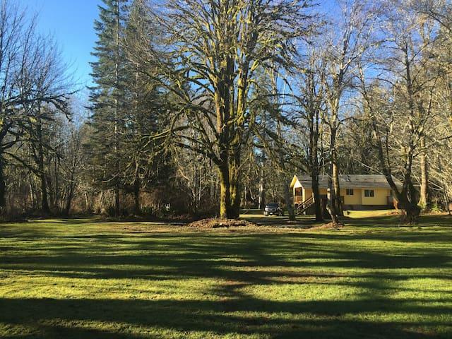 River Cottage - Elma - Cabin
