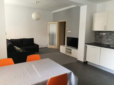 Quiet accomodation near from Ostrava city center