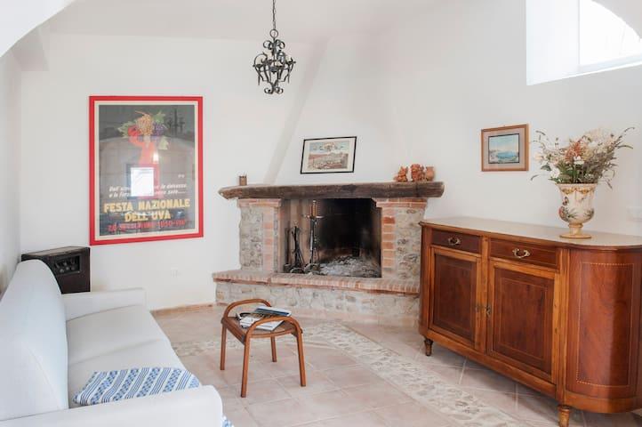 house with pool,hilltop,near the sea, vineyards - Cupra Marittima - House