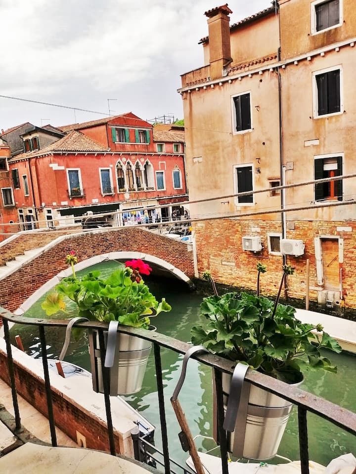 Apartment 458 Giardini