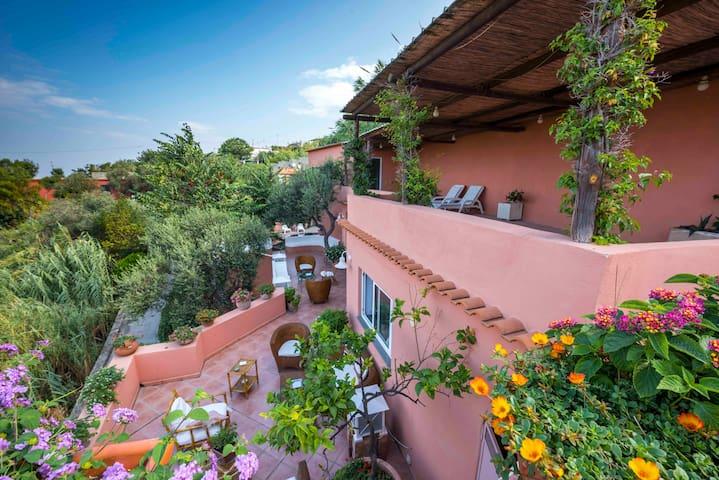 Villa La Torricella (Ischia) - フォリョ - 別荘