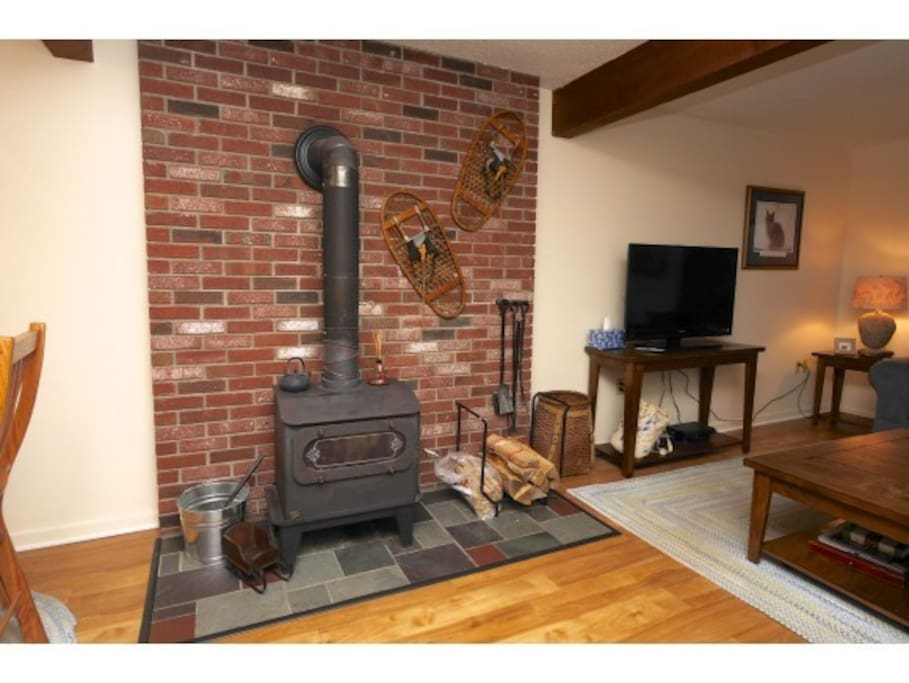 Wood burning stove for chilly winter nights
