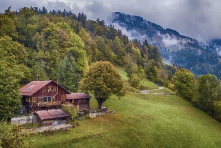 Heidi Chalet - Panoramic View - Modern Part