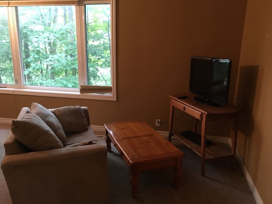 TV and sitting area in bedroom