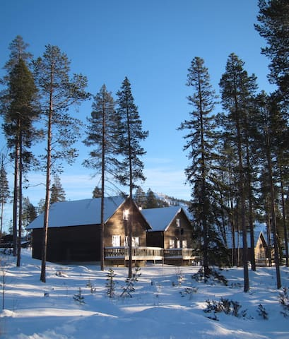 Beautiful and modern cottage, Räven