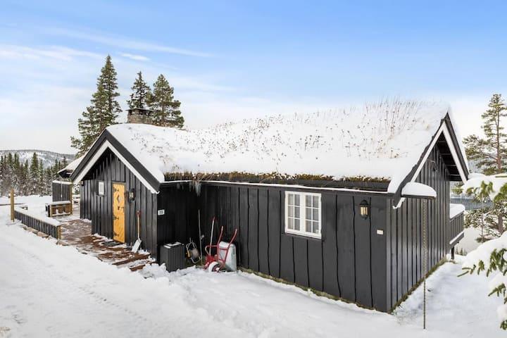 Koselig hytte på Gålå til leie!